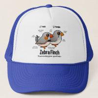 Zebra Finch Statistics Trucker Hat
