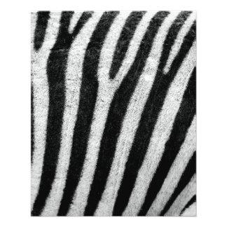Zebra Custom Flyer