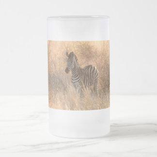 Zebra foal in morning light frosted glass beer mug