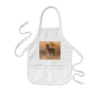 Zebra foal in morning light kids' apron