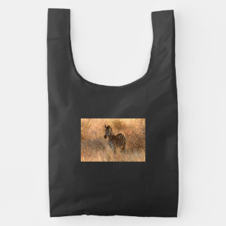 Zebra foal in morning light reusable bag