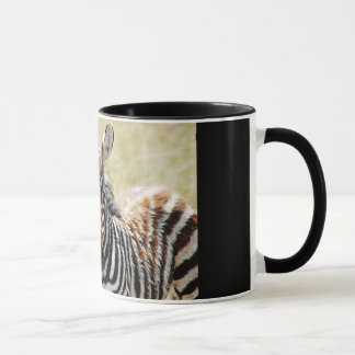 Zebra foal stripes baby photography mug