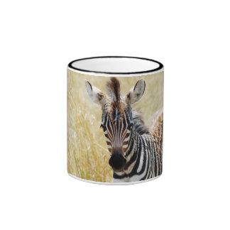 Zebra foal stripes baby photography coffee mug