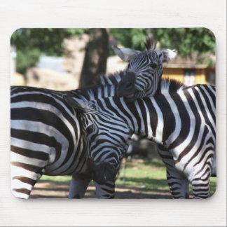 Zebra Friends Mousepad
