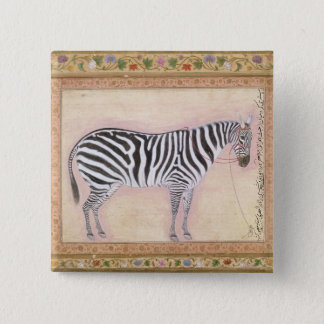 Zebra, from the 'Minto Album', 1621 (gouache on pa Button