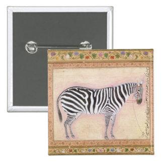 Zebra, from the 'Minto Album', 1621 (gouache on pa Button