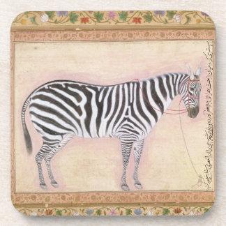 Zebra, from the 'Minto Album', 1621 (gouache on pa Beverage Coaster