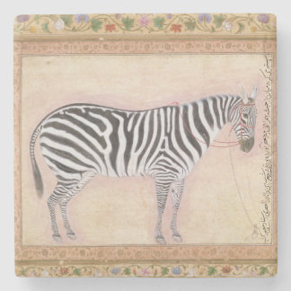 Zebra from the Minto Album 1621 gouache on pa Stone Coaster