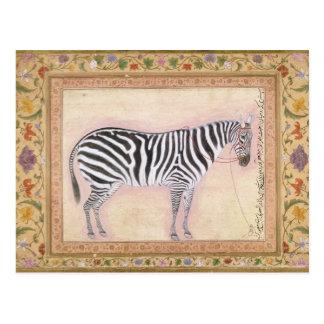 Zebra, from the 'Minto Album', 1621 (gouache on pa Postcard