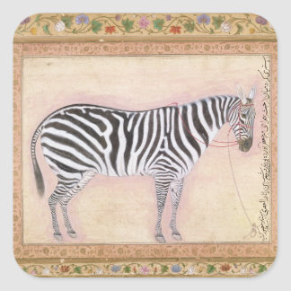 Zebra, from the 'Minto Album', 1621 (gouache on pa Square Stickers