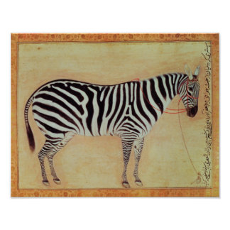 """Zebra, from the """"Minto Album"""", Mughal, 1621, Poster"""