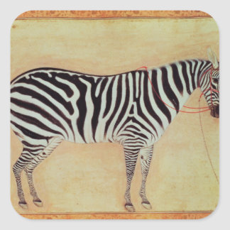"""Zebra, from the """"Minto Album"""", Mughal, 1621, Square Stickers"""