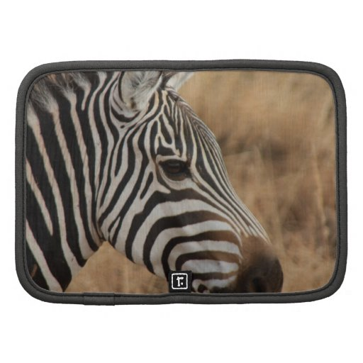 Zebra Head Organizer