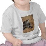 Zebra Head Tee Shirts