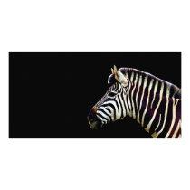 Zebra Head to Shoulder Card