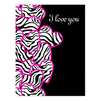 Zebra hearts Design Postcard