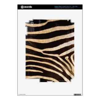Zebra Hide 2 Decals For iPad 3
