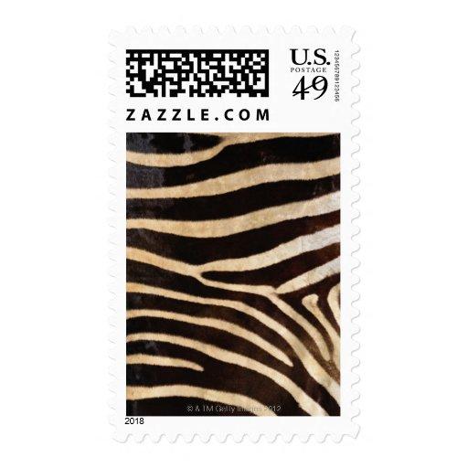 Zebra Hide 2 Postage Stamp