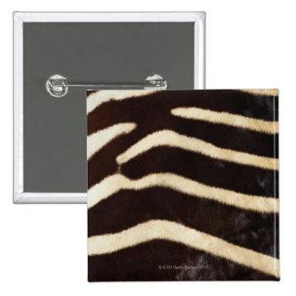 Zebra Hide Pinback Button