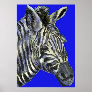 zebra in blue -  poster