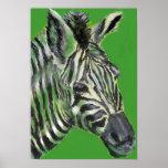 zebra in green -  poster
