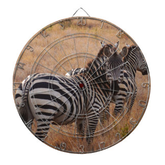 Zebra in Kenya Dartboards