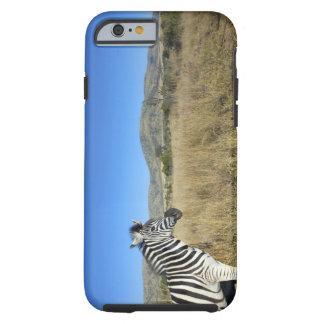 Zebra in open plain, Pilansberg National Park, Tough iPhone 6 Case