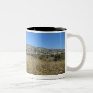 Zebra in open plain, Pilansberg National Park, Two-Tone Coffee Mug