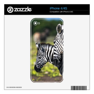 Zebra iPhone 4S Decal