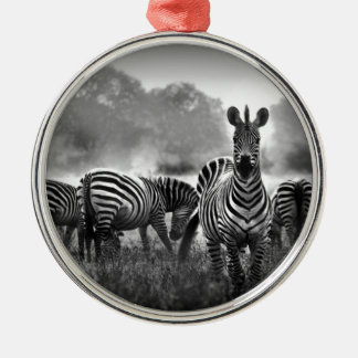 zebra.jpg christmas tree ornament