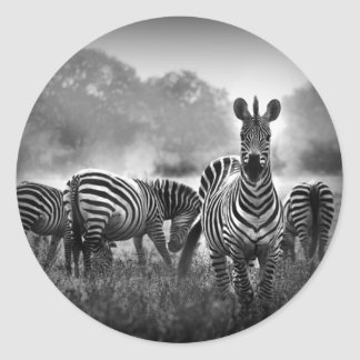zebra.jpg sticker