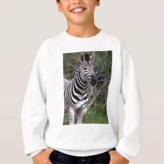 Zebra.jpg Sweatshirt