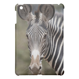 Zebra, Kenya, Africa iPad Mini Cases