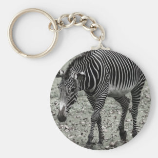 Zebra Key Chains