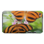 Zebra Long Wing Butterfly 2 Barely There iPod Cover