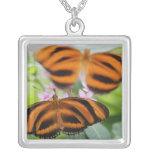 Zebra Long Wing Butterfly 2 Pendant
