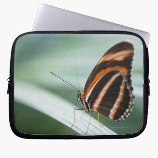 Zebra Long Wing Butterfly Laptop Computer Sleeve