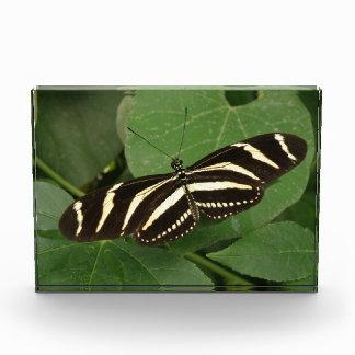 Zebra Longwing Butterfly Decorative Award