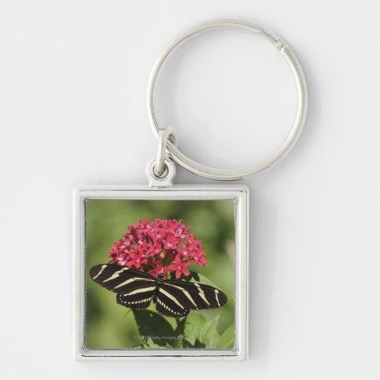 Zebra longwing butterfly, Heliconius Keychain