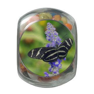 Zebra Longwing Glass Candy Jars