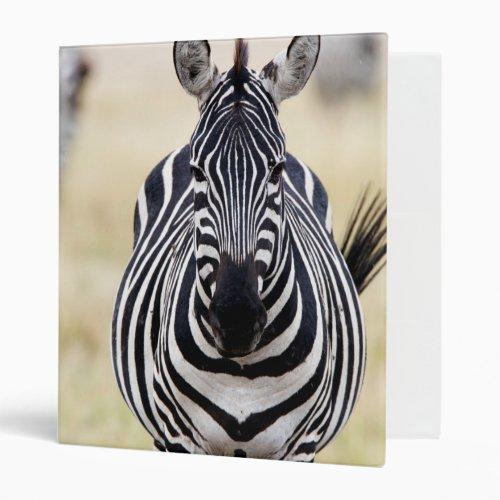 Zebra looking at you 3 ring binder
