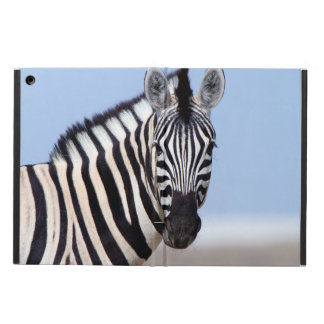 Zebra looking at you cover for iPad air