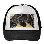ZEBRA LOVE MESH HATS