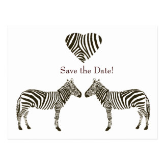 Zebra Love Save the Date Postcard