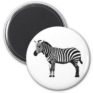 Zebra Refrigerator Magnets