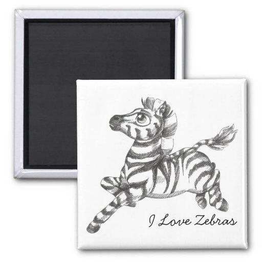 Zebra Magnet