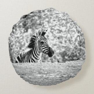 Zebra Round Pillow