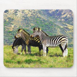 Zebra Mountain Mouse Pad