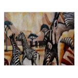 Zebra Mural Post Cards