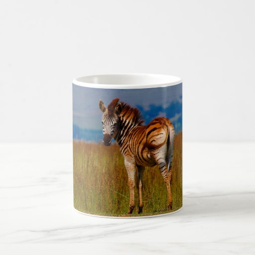 Zebra on the mountain classic white coffee mug